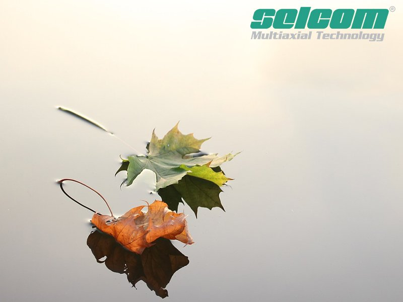 Selcom_Environmental Commitment