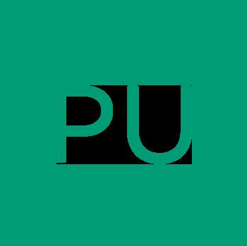 Polyurethane Icon