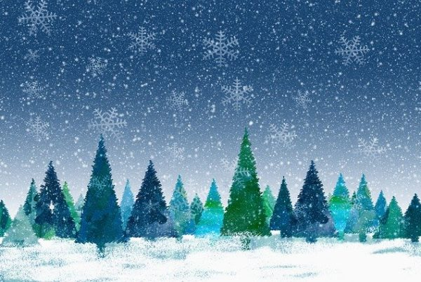 Selcom Happy Holidays